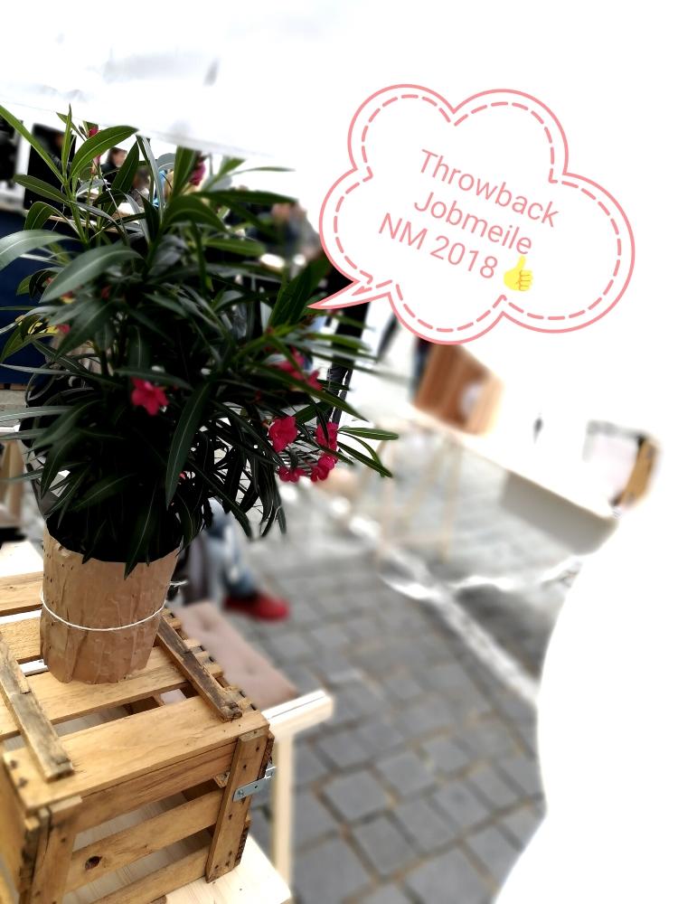 Jobmeile NM 2018 Rückblick Studio Blom Career Service