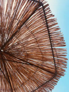 pro-styling-house-of-blom-heatwave-teodor-drobota-352911-unsplash-